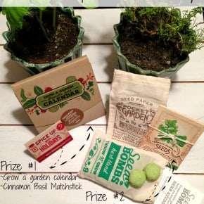 Botanical PaperWorks Giveaway