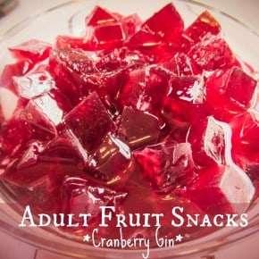 Homemade Adult Fruit Snacks
