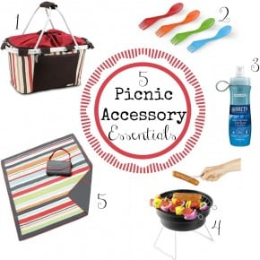 5 Picnic Accessory Essentials