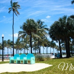 Miami Beach Chairs