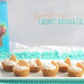 5 Ingredient Mini Coconut Banana Cream Pies & Salem Baking Co Giveaway!