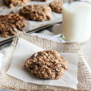 Quick and Healthy Breakfast Cookies {naturally gluten free & vegan}