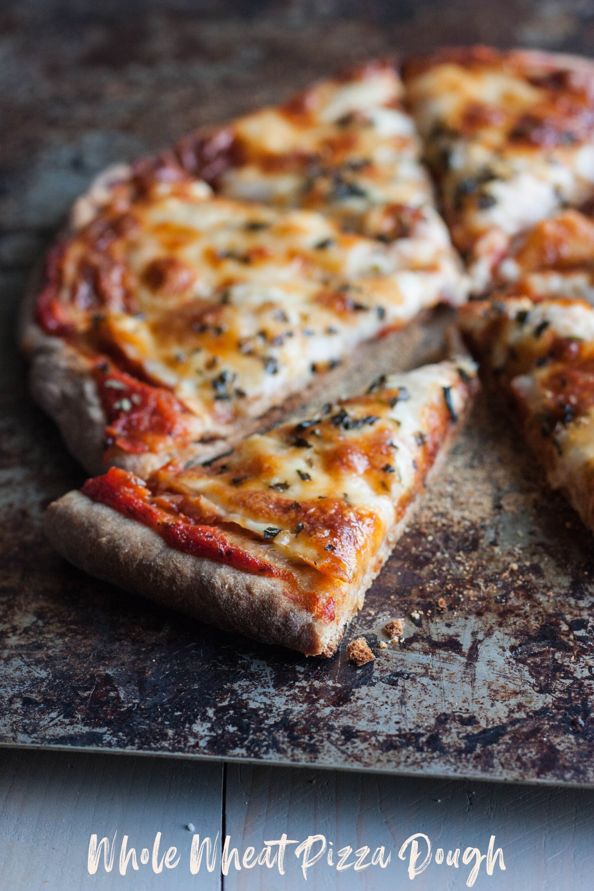 Fail Proof Whole Wheat Pizza Dough Sweetphi