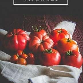 10 Ways to Use Fresh Tomatoes