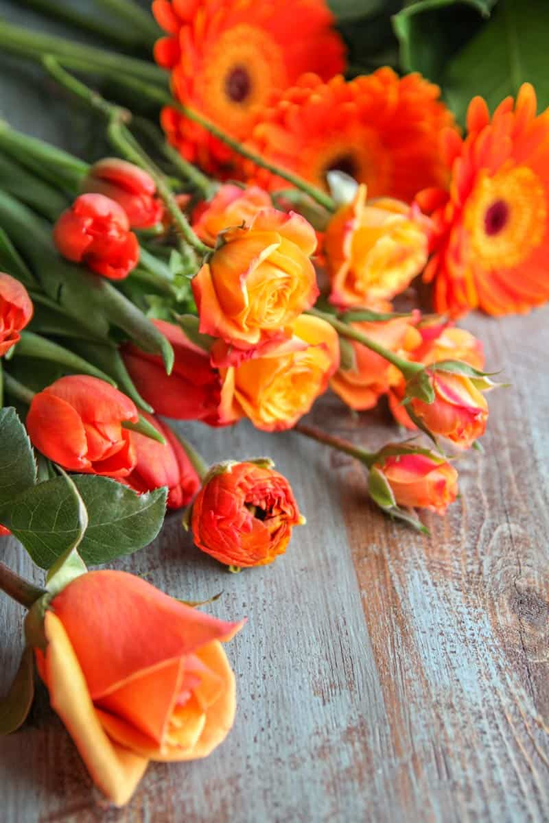 Orange flowers for a flower arrangement in a bowl
