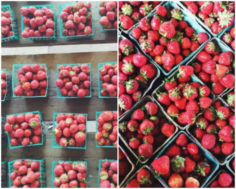 The freshest strawberries from the farmers market to make strawberries and cream tartlets