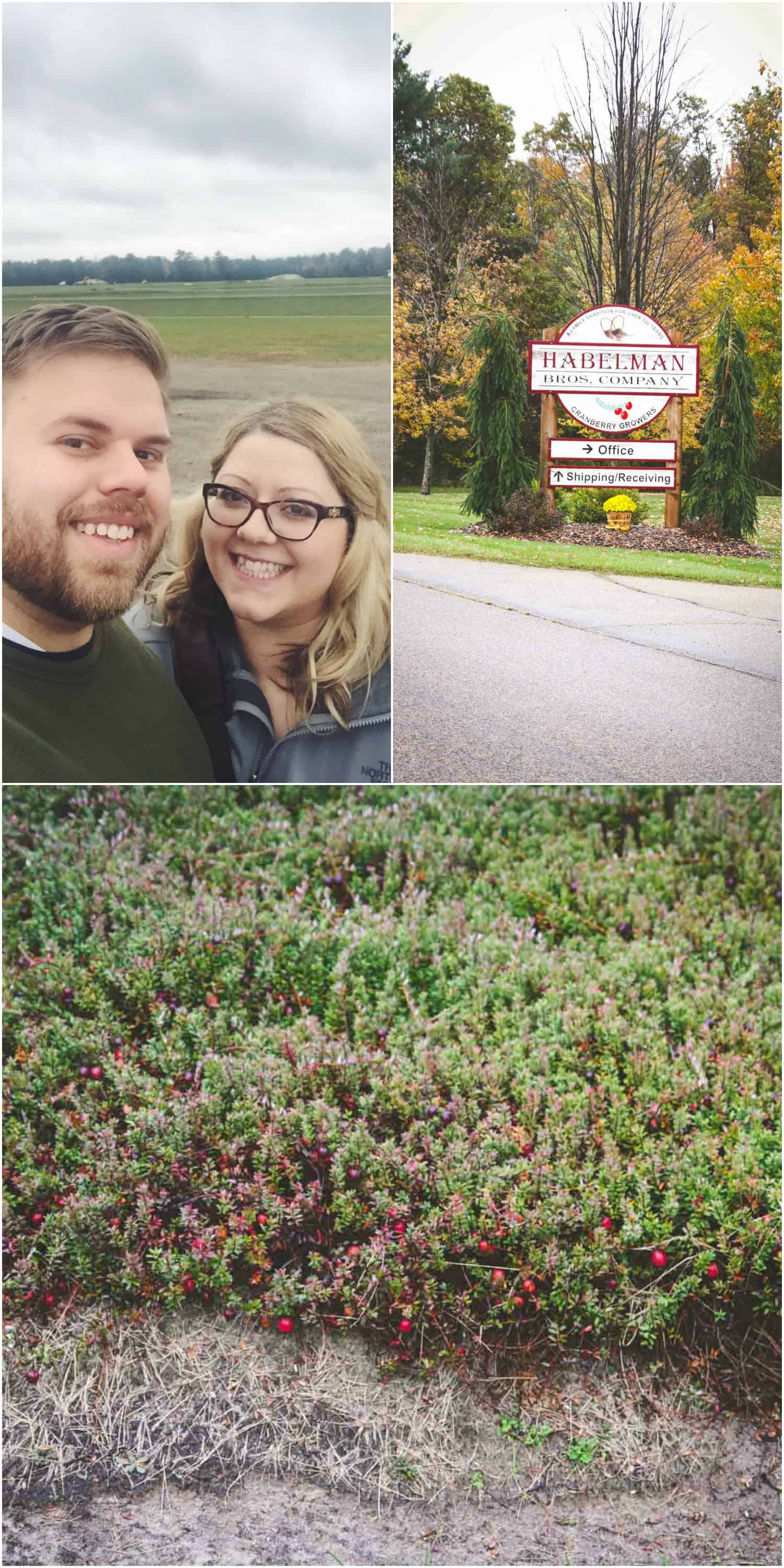 Our trip to a Wisconsin cranberry bog