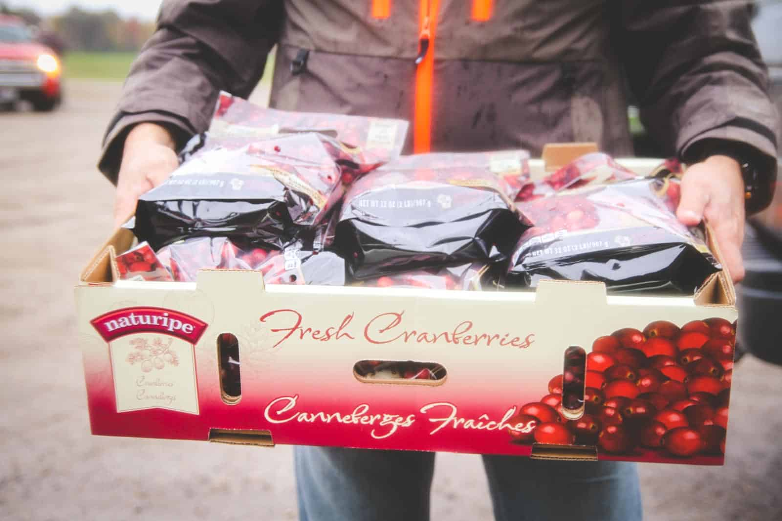 The best Wisconsin cranberries to make cranberry salsa
