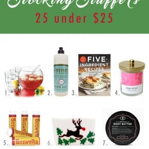 Stocking stuffers - 25 under $25