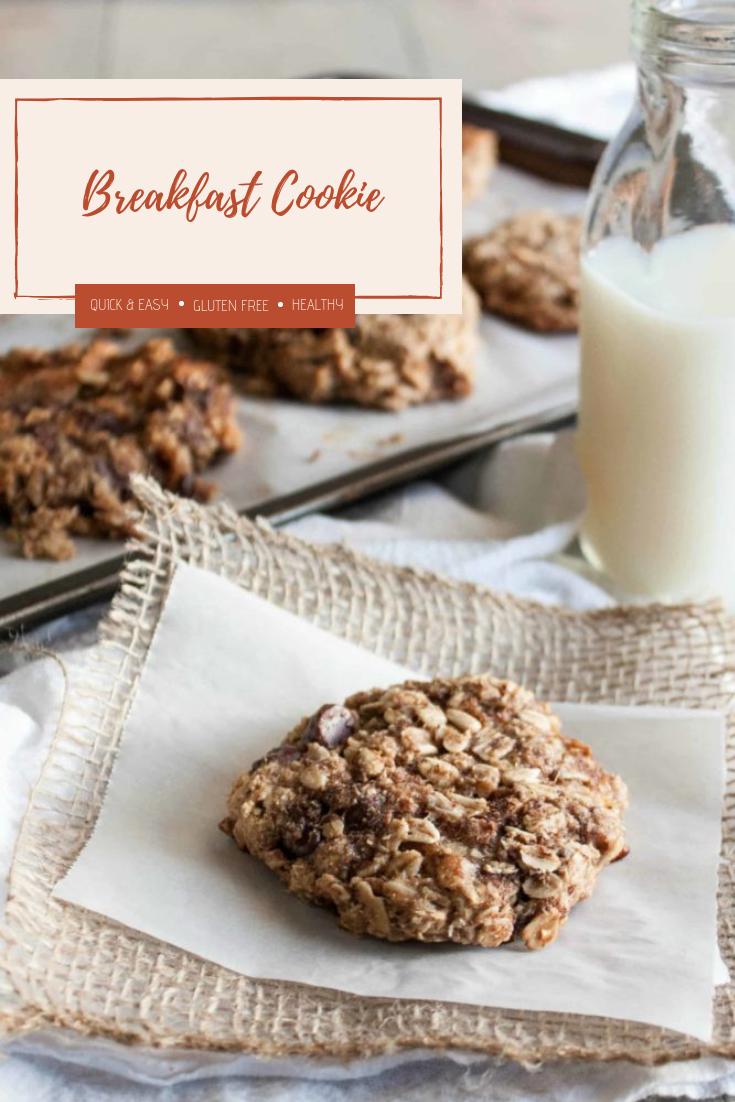 Breakfast-cookies-gluten-free-and-vegan