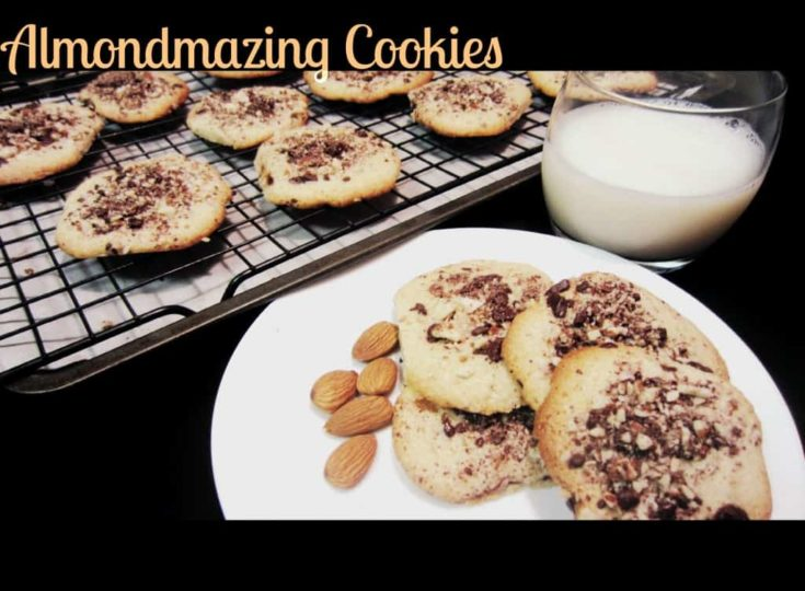 Almondmazing Cookies - Gluten Free Almond Cookies with Dark Chocolate Almond Topping