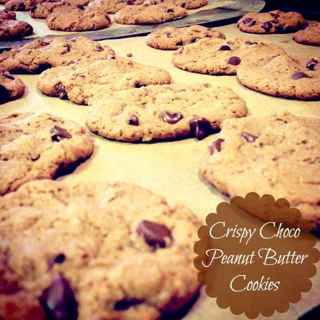Crispy Choco Peanut Butter Cookies (Gluten Free)