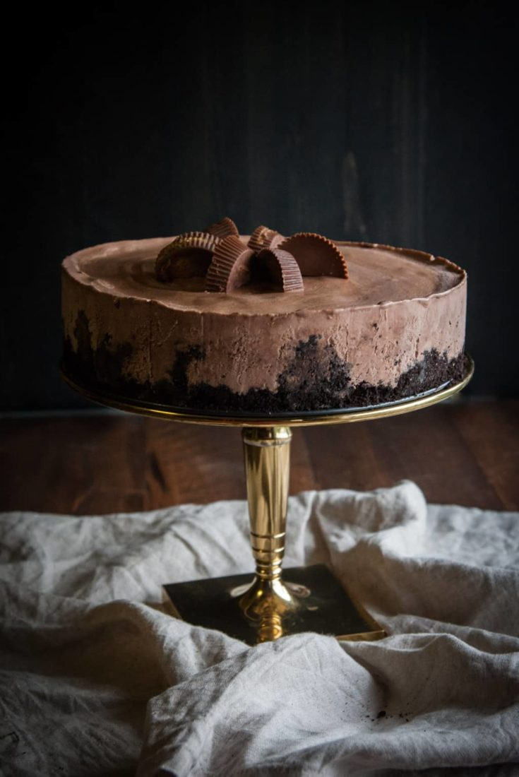 5 Ingredient Chocolate Peanut Butter Cup Ice Cream Cake