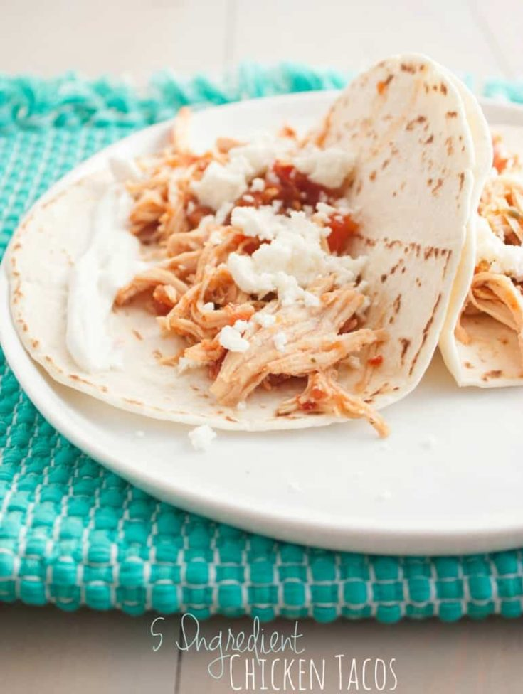 5 Ingredient Chicken Tacos {my favorite taco recipe!}