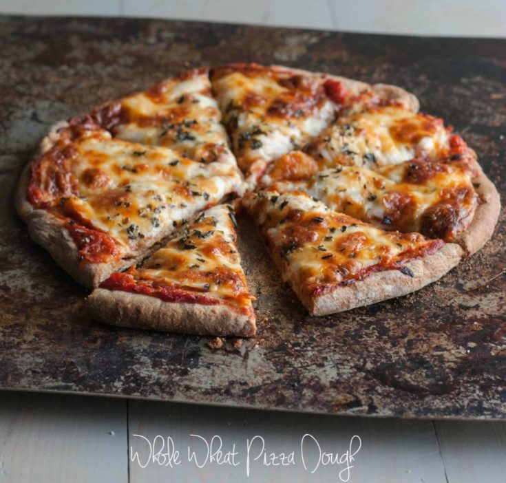 Fail Proof Whole Wheat Pizza Dough