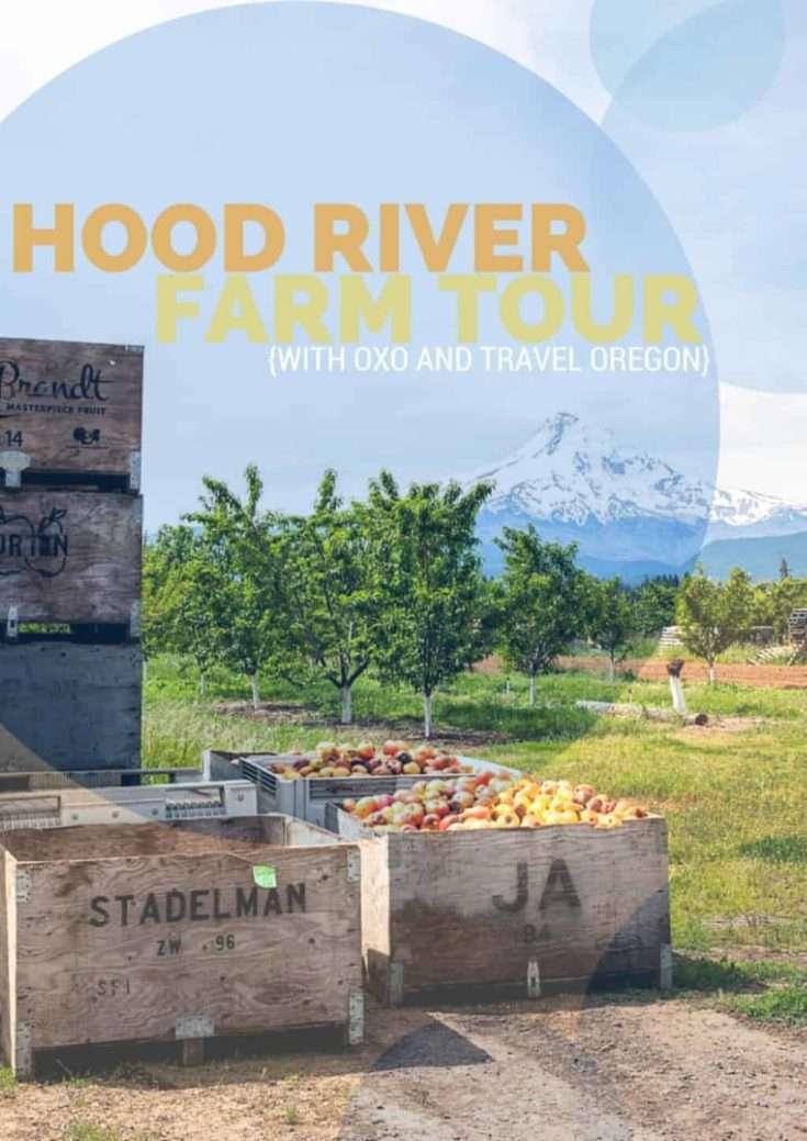 OXO GreenSaver Produce Keeper, a Salad Recipe, and Hood River Farm Tour Recap