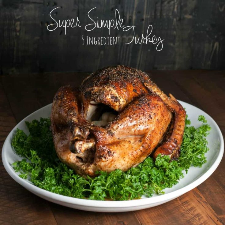 Super Simple 5 Ingredient Turkey