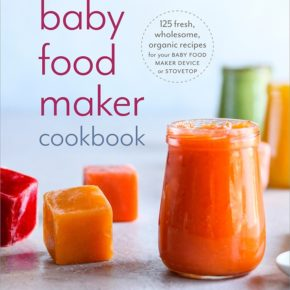 Baby Food Maker Cookbook Announcement!
