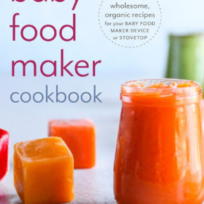 Baby food maker cookbook preoder bonus