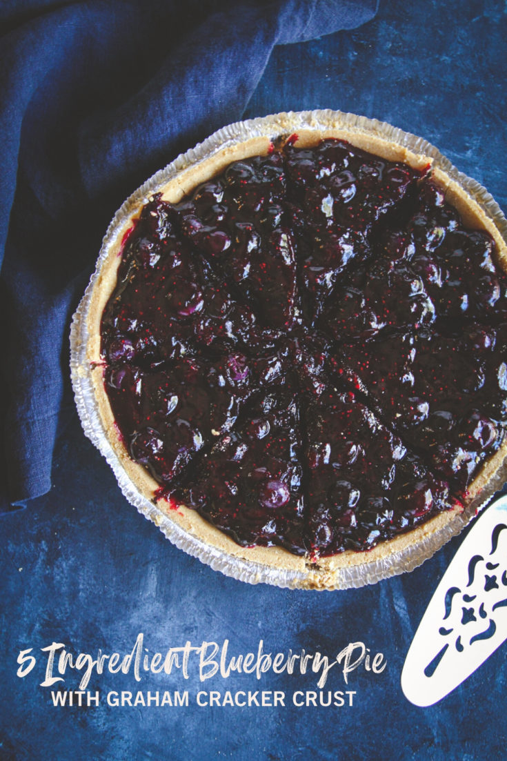 5 Ingredient Blueberry Pie in Graham Cracker Crust