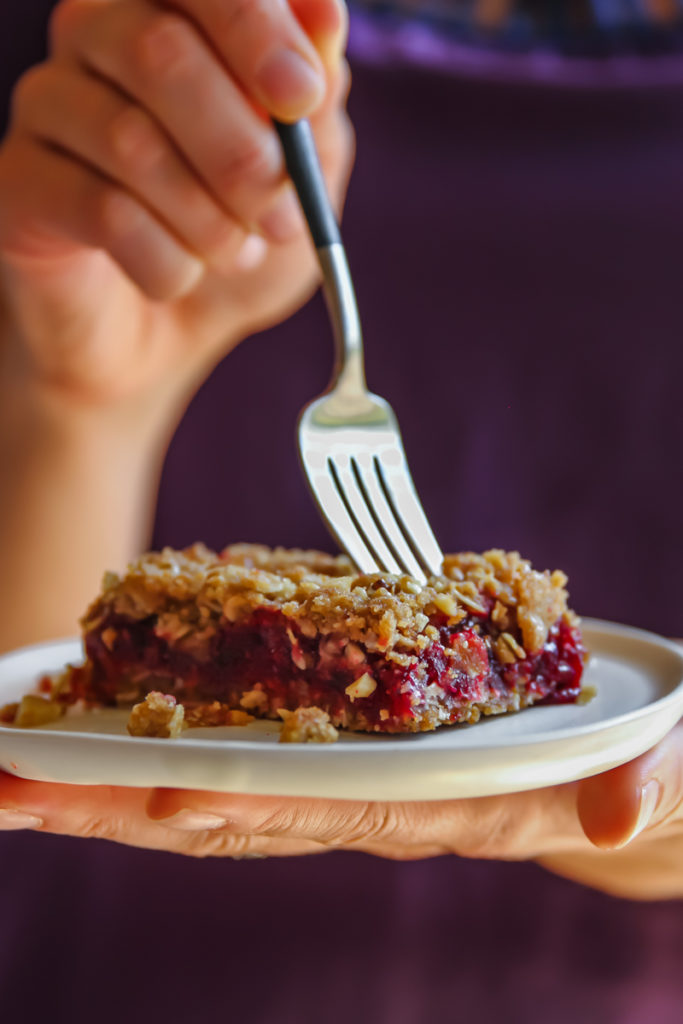 The most sweet and tangy cranberry walnut crumb bars