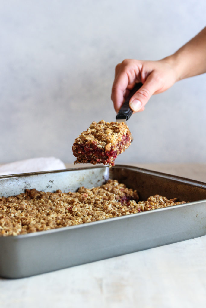 The most amazing cranberry walnut crumb bars