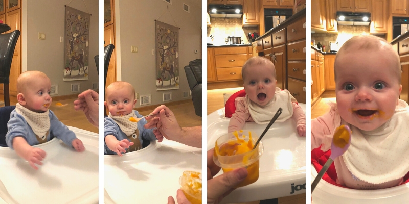 The twins eating sweet potato puree for the first time