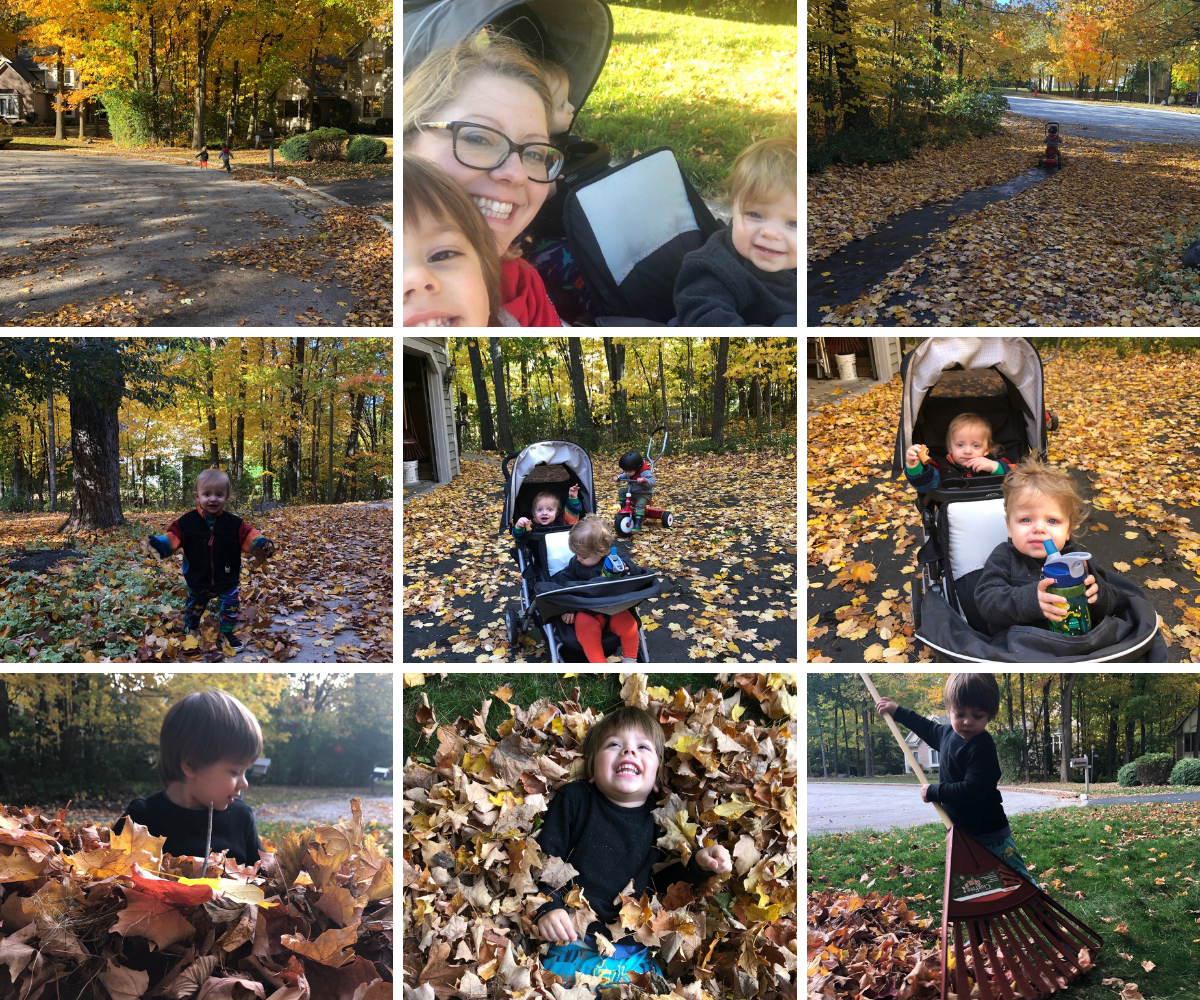 Fall walks with the kids