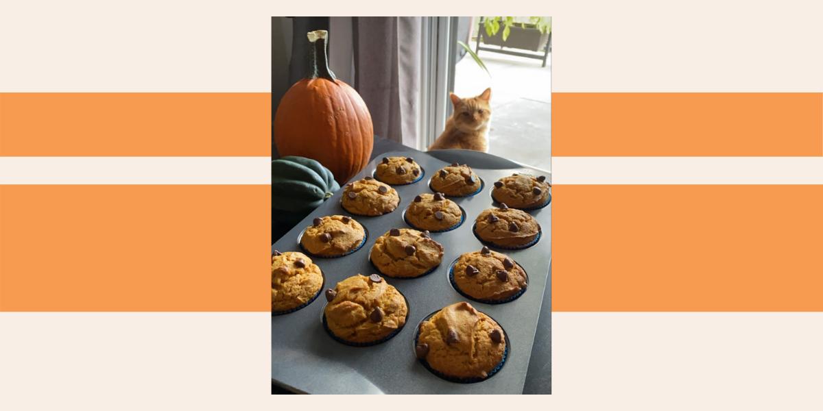 Reader recreation, pumpkin loaf