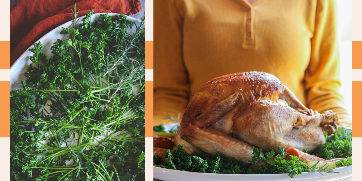 Tips for a beautiful turkey presentation